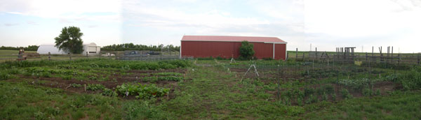 The Main Plot as of July 15th, 2009