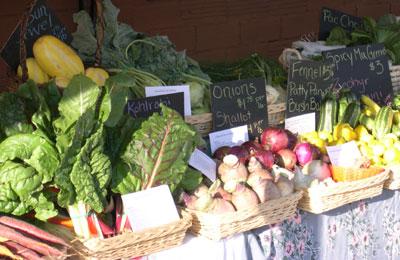 Swiss chard, sun jewel melons, kohlrabi, rutabaga, onions, fennel, summer squash...