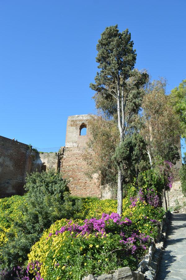 Castle_WalkUp