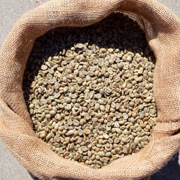 Raw Colombia Beans