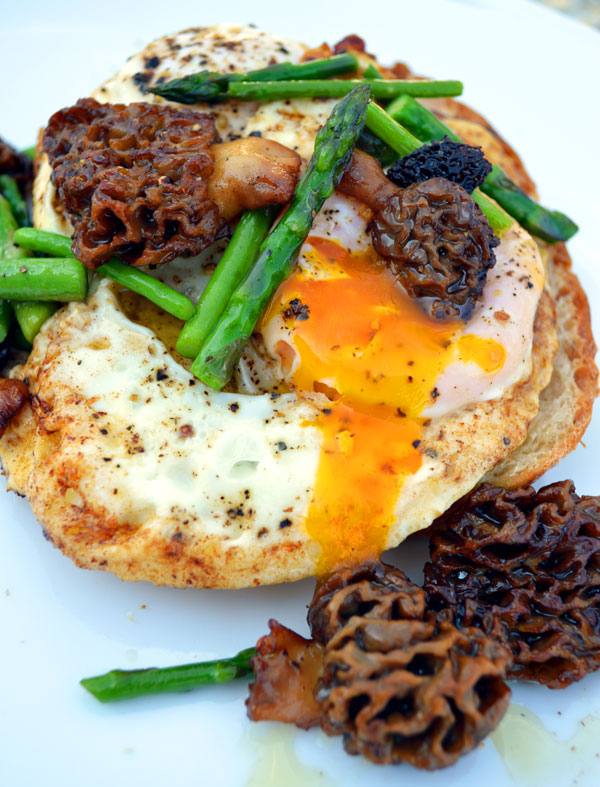 Morel_Breakfast